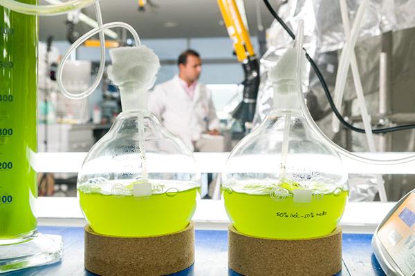 Laboratorio linea biogas